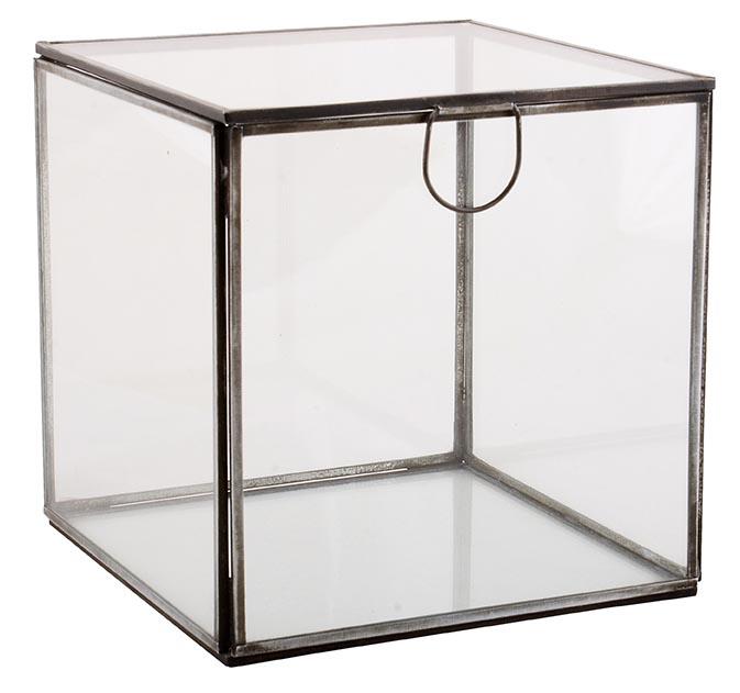 Square Glass Display Box